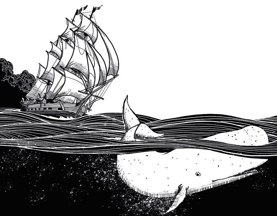 HBBR 20183649 TXT F 09 PauloGalindro - História de uma baleia branca
