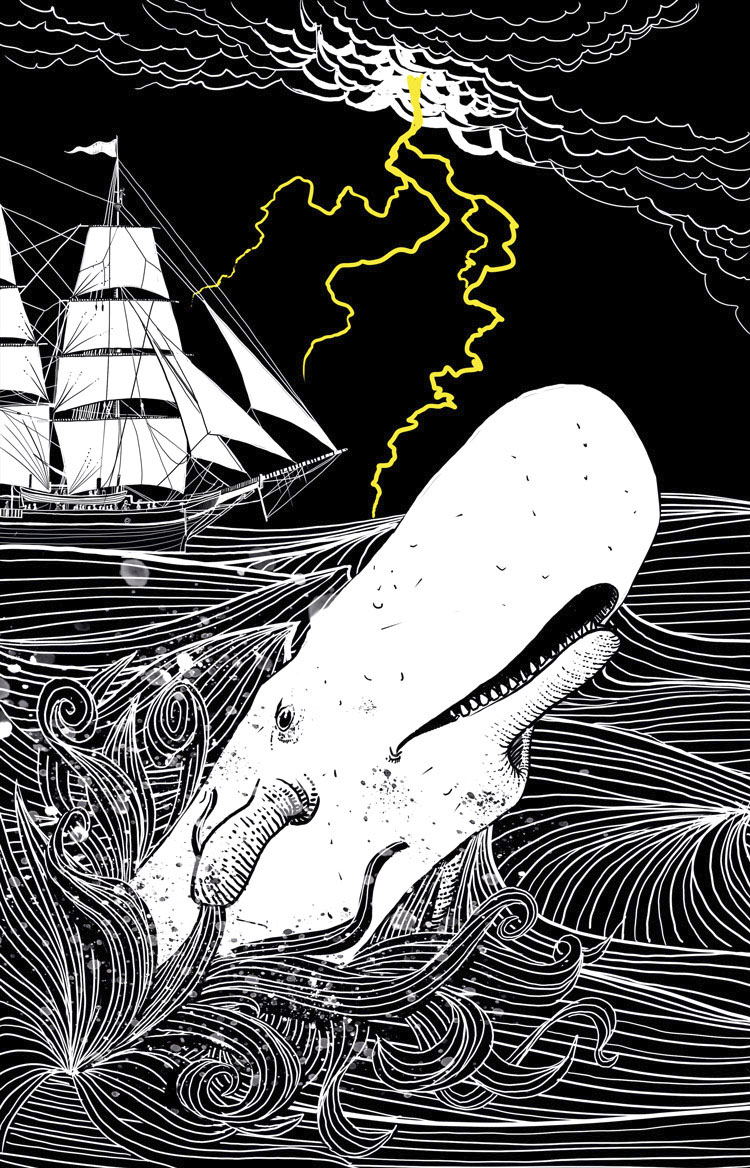 HBBR 20183649 TXT F 30 PauloGalindro - The story of a white Whale